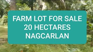 FARM LOT for sale- 20hectares- Maravilla, Nagcarlan Laguna Philippines