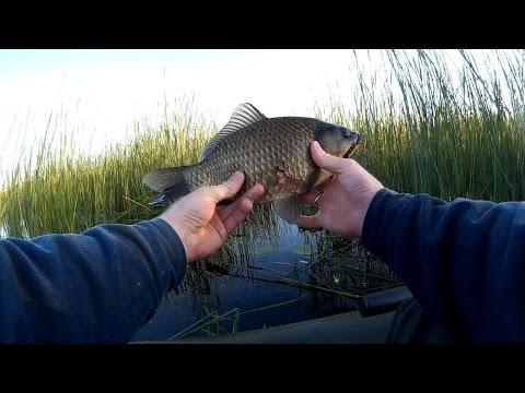 рыбалка на карася весной в камышах