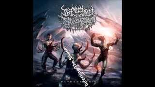 THE Best 20 Brutal Death Metal Bands