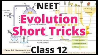 Evolution Short Tricks|Ncert Biology For NEET|AIIMS|JIPMER|Class 12|Biology Bytes