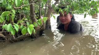 Cua Nấu Canh Chua Cá Nâu Kho Trái Giác. Chú Út Cùng Anh Em Mới Thử Lần Đầu - T333