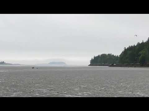 Video Of Sagadahoc Bay Campground, ME From Ming R.