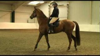 Richard Maxwell shows how to ride a spooky horse  TRAILER