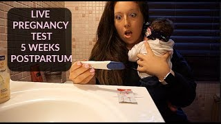 Taking a Pregnancy Test 5 Weeks Postpartum!