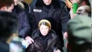 Freed Tymoshenko rallies protesters in Kiev   Stuff co nz