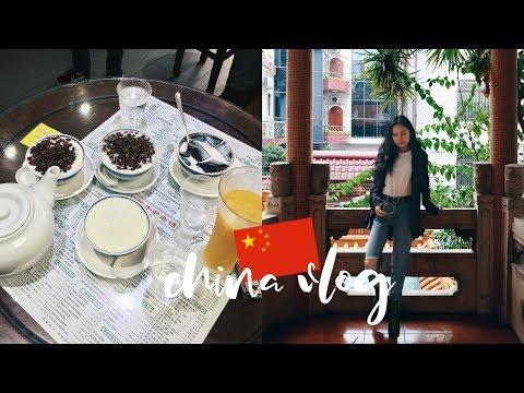 VISITING MY FAMILY + LOTS OF FOOD【CHINA VLOG】