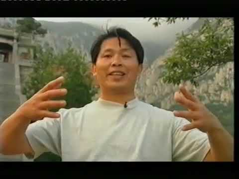 Zhan Zhuang Qi Gong - Lam Kam Chuen - Stand still be fit - El camino de la energia   - Día 4