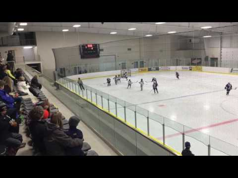 Central Ontario Wolves vs Whitby Wildcats - February 18, 2017