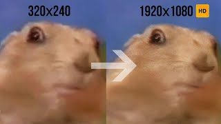 Dramatic look. Famous Marmot HD  /2007 → 2019/ AI upscaled meme Dramatic look to HD