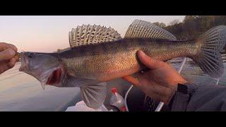 ловля судака на дроп шот джиг балансир рыбалка на хищника