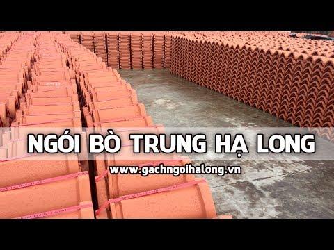 Ngói Bò Trung Hạ Long | Nóc Trung Hạ Long | Gạch Ngói Hạ Long | Www.gachngoihalong.vn
