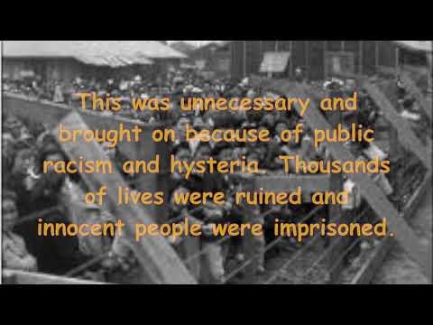 WW1 Civil Liberties Project
