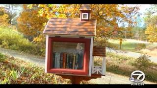 Little Free Libraries Go Up in Trinity County