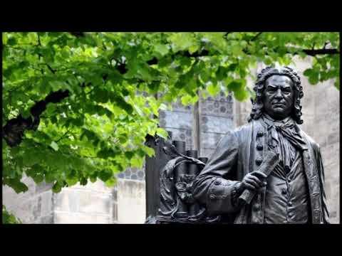 J.S. Bach Violin Concertos, I Musici