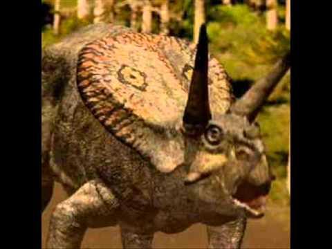 Torosaurus lock horns./Torosaurus bloqueo de cuernos.