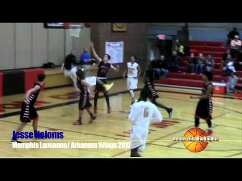 Jesse Neloms, PG 2017, Lausanne Collegiate School (Memphis)/Arkansas Wings Sophomore Highlights