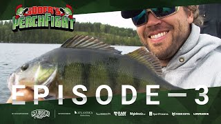 Perch Fight 2019 - Episode 3