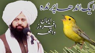 Gambar cover Raaziq ALLAH hai | Peer Abdul Waheed rizvi