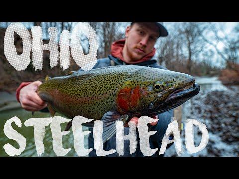Ohio Steelhead Fishing Challenge! Day 1