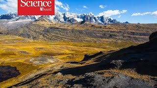 The Long History Of The Andes