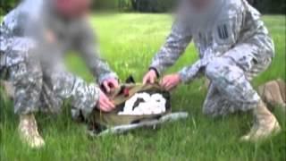 Bulldog Resupply Bag - Bull Dog Equipment