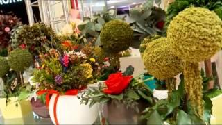 Цветы Ingreen в Тюмени(Фитодизайн - модное направление в оформлении интерьеров. Это не просто горшочки на подоконнике, как у наших..., 2014-07-11T07:00:47.000Z)