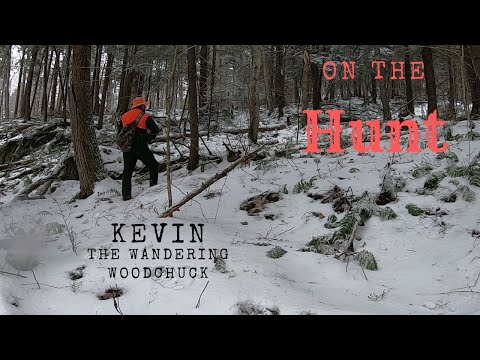 On The Hunt In The Green Mountains Of Vermont.