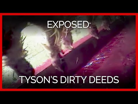 Tyson's Dirty Deeds