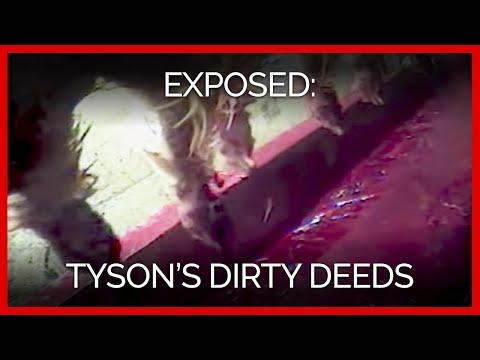 Tyson's Dirty Deeds