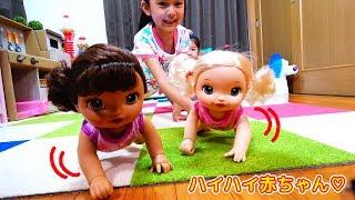 喋る!動く!飲む!ハイハイする赤ちゃんでママになりきりごっこ遊び♪おもちゃ himawari-CH thumbnail