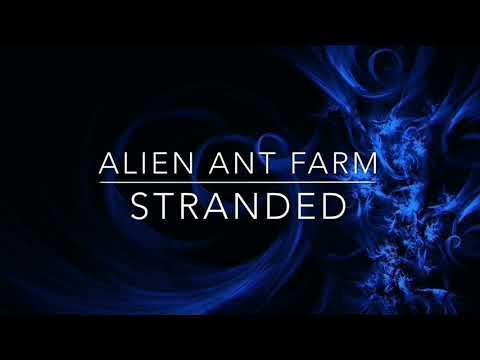 ALIEN ANT FARM  STRANDED