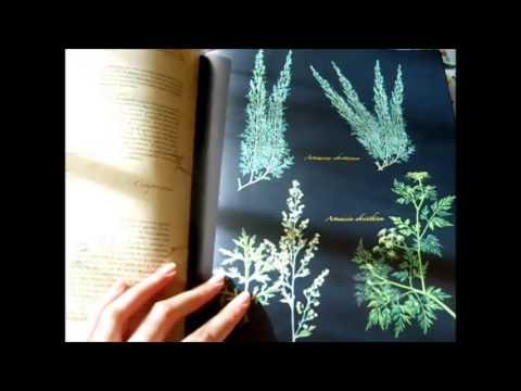 006--libros-de-hierbas-y-fitoterapia-que-recomiendo,-parte-1