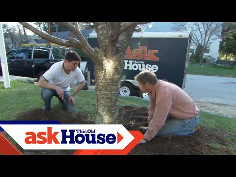 How to Mulch a Garden Bed