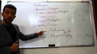 Antigone expliqué en 3 minutes ! 1ere année bac