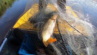 Они Чуть Не Утащили С Лодки Рыбалка Кастинговой Сетью На Старом Русле