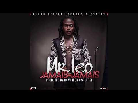 Mr Leo - Jamais Jamais [Karaoke]