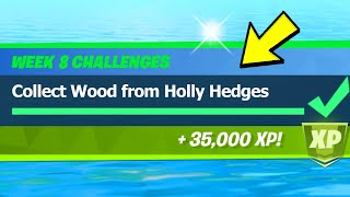 Collect Wood from Holly Hedges Location (Fortnite)