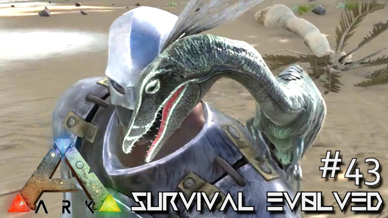 how to add no collision to ark server