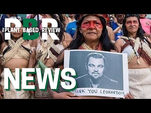 Leonardo DiCaprio hung out with Greta Thunberg and called her a ...