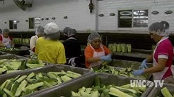 NC NOW | Mount Olive Pickle Company | UNC-TV