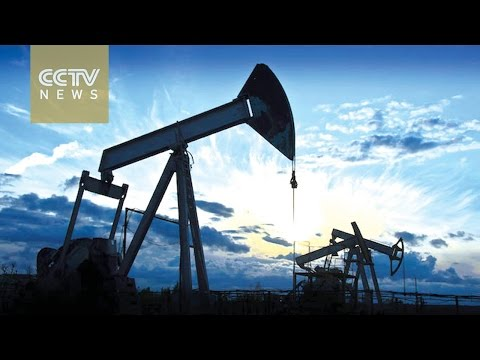 OPEC seeks to nail down oil output cut