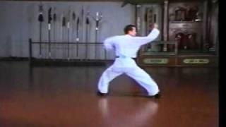Bak Sil Lum (Northern Shaolin) - Tun Da Shaolin #6 Sample