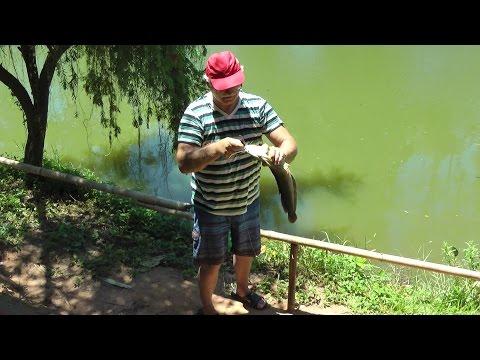фантьет рыбалка на озере