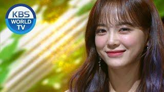 SEJEONG(세정) - Plant(화분) [Music Ban...