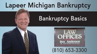 Lapeer Michigan Bankruptcy Attorney | Bankruptcy Basics