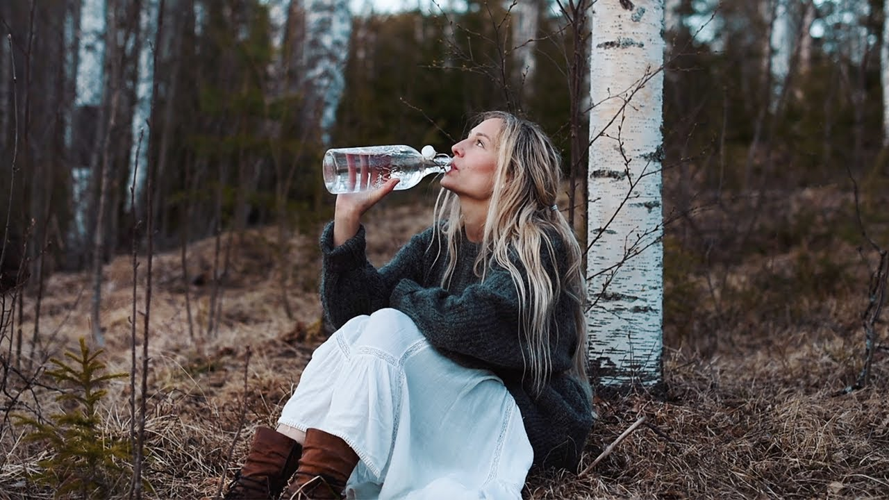 How to tap Birch Sap    Health benefits & a taste of spring