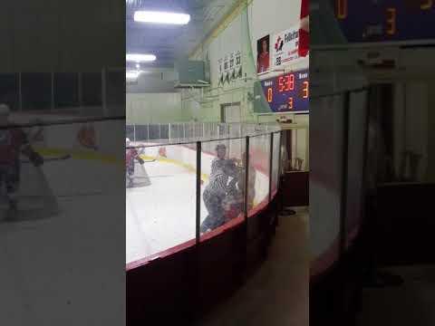 Hockey Fight - Predators vs RedWings Oct 20, 2017