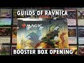Best MTG Guilds of Ravnica Booster Box