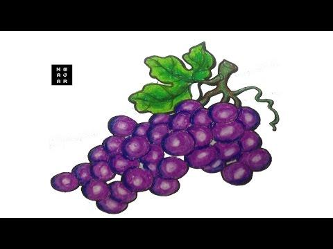 94 Gambar Anggur Untuk Di Warnai Terlihat Keren