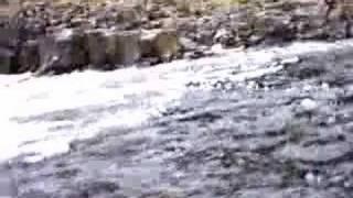 Low Force, River Tees, UK